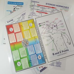 Steroid Hormone Chart (Endocrine Points)